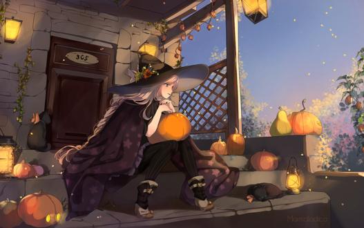 Обои Девушка-ведьма сидит на ступеньках, окруженная тыквами, автор Marmalade