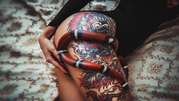 Обои Женская ножка с тату, на которой, лежит змея. Фотограф Антон Харисов