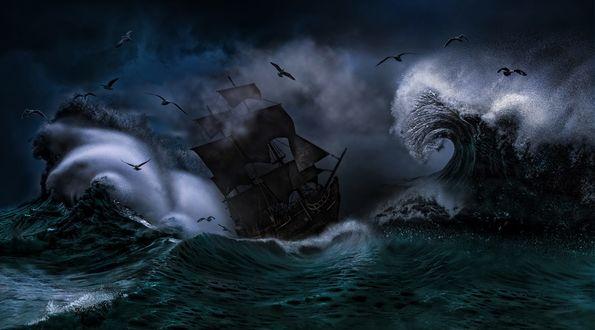 Обои Парусник на волнах во время шторма, фотограф Nasser Osman