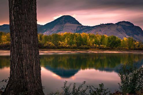 Обои Отражение горы Павла на рассвете, на переднем плане ствол дерева, фотограф Raul Weisser