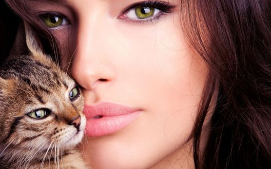 Обои Британская актриса Мелисса Кларк / Melissa Clark с серой кошкой
