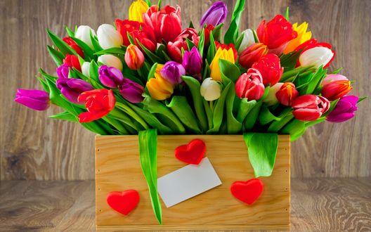 Обои Большой букет разноцветных тюльпанов в деревянном ящике с сердечками