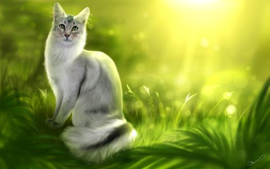 Обои Кошка сидит в траве, by Martith