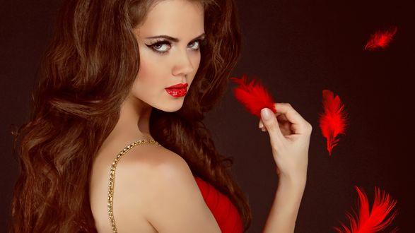 Обои Красивая девушка шатенка, с томным взгядом, держит красное перышко в руке