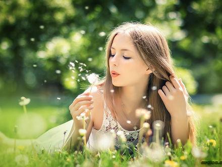 Обои Милая девушка, сдувает пушинки с одуванчика, на фоне природы
