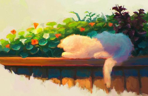 Обои Белая кошка спит около цветов, by Sylar113