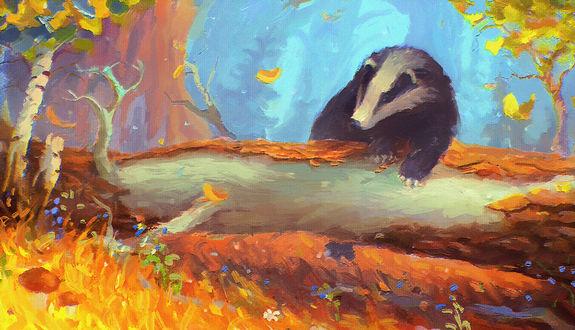 Обои Барсук сидит на поваленном дереве, by Sylar113
