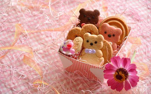 Обои Розовый цветок лежит на столе возле коробочки с печеньем в виде мишек