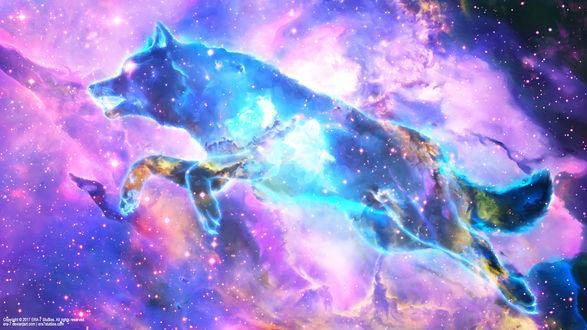 Обои Призрачный волк в космосе, by ERA-7
