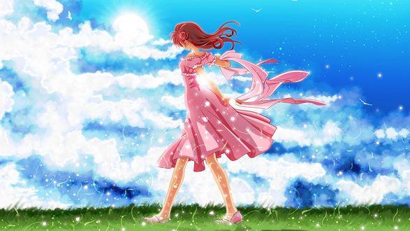 Обои Девушка в розовом платье