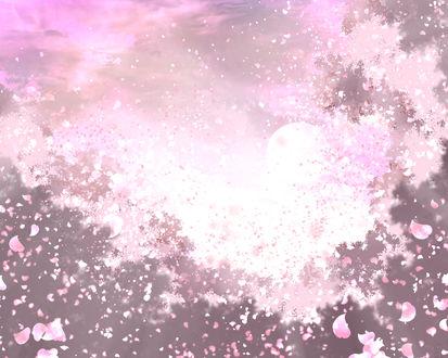 Обои Цветущая сакура, by saya