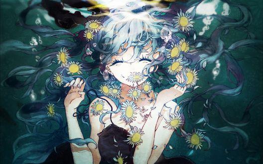 Обои Вокалоид Хатсуне Мику / Vocaloid Hatsune Miku под водой в окружении ромашек, by Dizi930