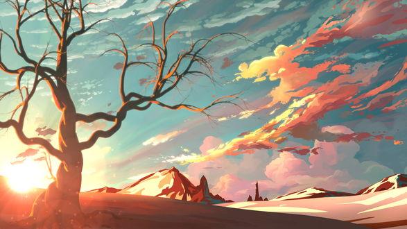 Обои Большое дерево без листвы, на фоне заката, автор MasterTeacher