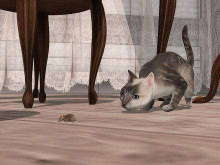 Обои Крадущийся за мышкой на полу кот, by Strawberry Singh