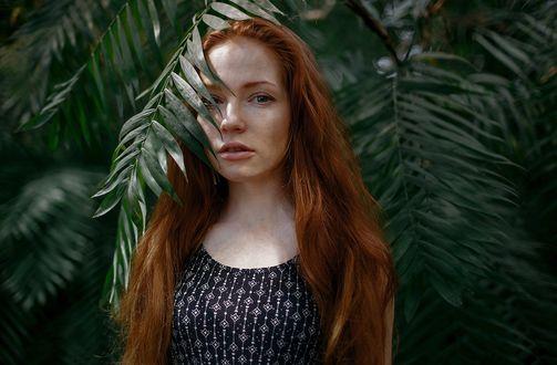 Обои Модель Оксана Бутовская с длинными рыжими волосами стоит у дерева. Фотограф Екатерина Фортуна