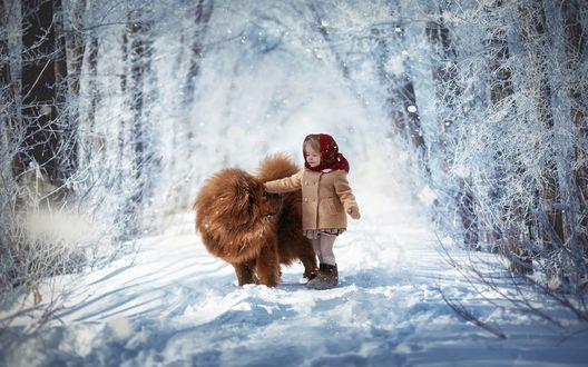 Обои Девочка с собакой в зимнем лесу, фотограф Мытник Валерия