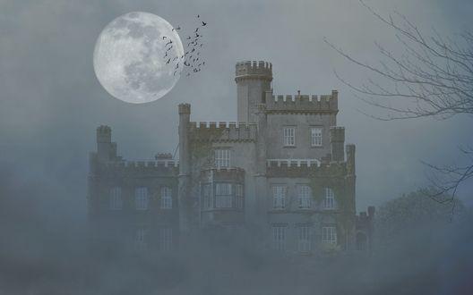 Обои Замок окутан пеленой тумана, в небе над замком полная луна и стая пролетающих птиц