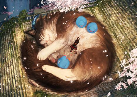 Обои Девочка лежит на огромном спящем коте и на нем же сидят голубые птицы