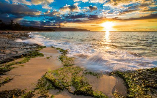 Обои Побережье Гавайев на рассвете