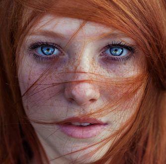 Обои Портрет девушки с рыжими волосами, с веснушками и голубыми глазами, фотограф Maja Topсagiс