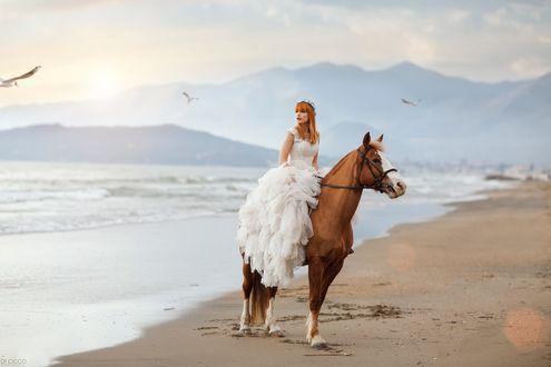 Обои Девушка в белом платье на лошади, фотограф Alessandro Di Cicco