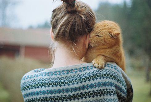 Обои Рыжий кот на плече девушки, by Hanne Johansen