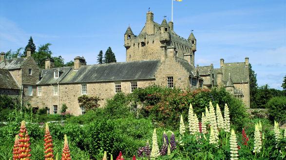 Обои Замок в Шотландии, вокруг деревья и цветы