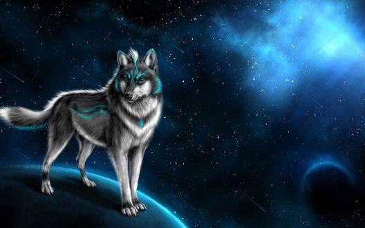 Обои Волк стоит на планете, на фоне космоса и падающих звезд