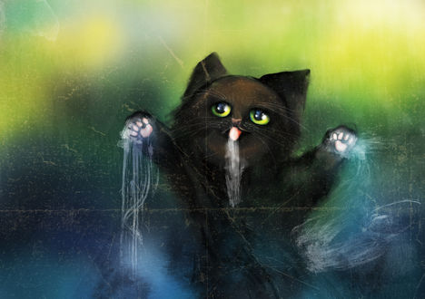 Обои Черный котик с поднятыми лапками, by Lalingla