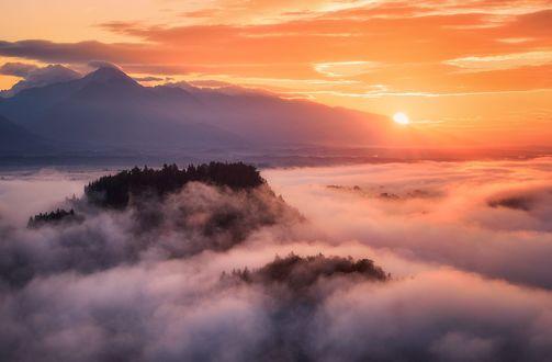 Обои Чудесное туманное утро в Словении, фотограф Daniel F