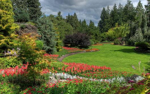 Обои Сад с цветами и деревьями в одном из парков Ванкувера, Канада / Vancouver, Canada
