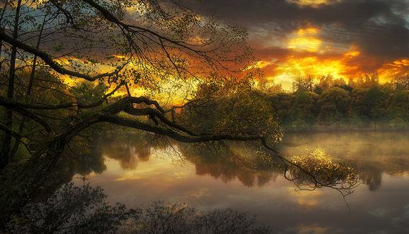 Обои Красивый закат на фоне природы, by GaL-Lina