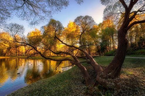 Обои Живописный осенний пейзаж, by GaL-Lina