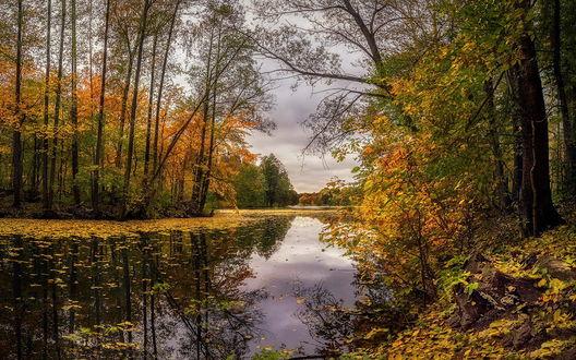 Обои Прекрасный осенний пейзаж, by GaL-Lina