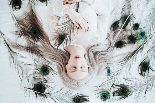 Обои Девушка лежит среди павлиньих перьев, фотограф Jovana Rikalo