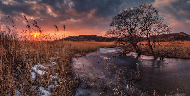 Обои Работа Прелюдия весны. Фотограф Андрей Кровлин