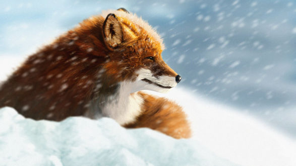 Обои Рыжая лиса под падающим снегом, by Onionrider