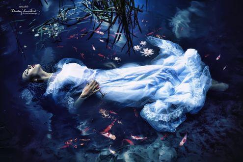 Обои Девушка лежит в воде, где плавают рыбы, by Dmitry Senichkin
