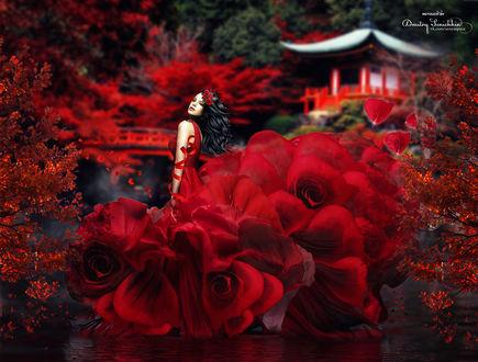 Обои Девушка в платье из красных цветов, by Dmitry Senichkin