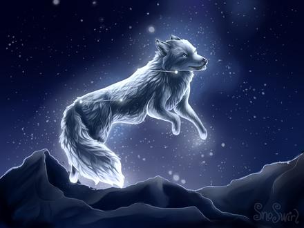 Обои Белый волк с созвездием на шкуре, by SnoSwirl
