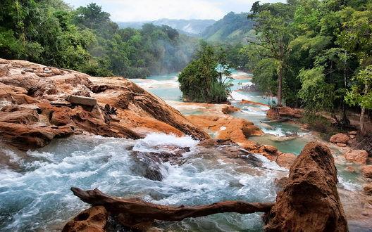 Обои Горная река с порогами, окруженная лесом