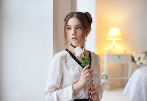 Обои Модель Xenia Kokoreva / Ксения Кокорева с белой розой в руке, фотограф Maxim Maximov