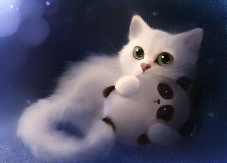 Обои Белый пушистый котенок держит в лапах игрушку - панду, by Apofiss