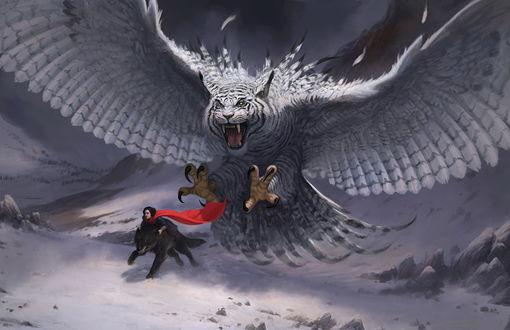Обои Огромная сова с головой тигра преследует человека верхом на черном волке