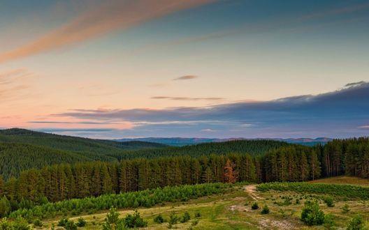 Обои Бескрайние хвойные леса в гористой местности села Верхний Авзян, республика Башкортостан / Башкирия, Россия