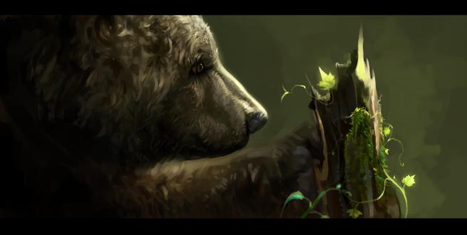 Обои Медведь точит лапы об сломанное дерево, by SalamanDra-S