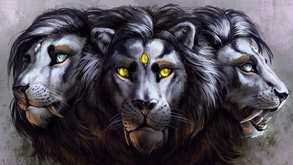 Обои Три морды львов с тремя глазами, by Alaiaorax Corvum
