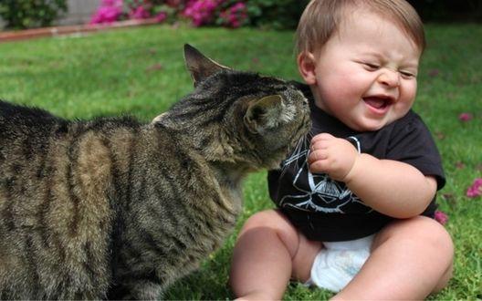 Обои Маленький ребенок смеется играя с котом на зеленой траве