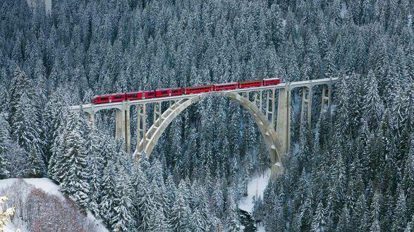 Обои Поезд проезжает виадук среди заснеженного леса, Швейцария