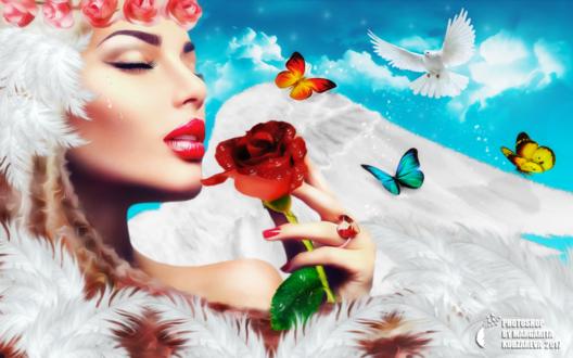 Обои Девушка - ангел cо слезами на лице, с венком из цветов, с красной розой в руке, с разноцветными бабочками на крыле и с парящим голубем на фоне неба и облаков, by Margarita Kobzareva
